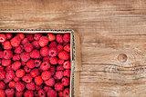 Fresh organic ripe raspberry in box
