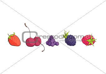 Bright berries on white