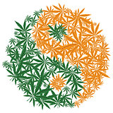 Colorful marijuana design Yin Yang cannabis leaf symbol. Vector.