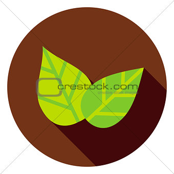 Green Leaves Circle Icon