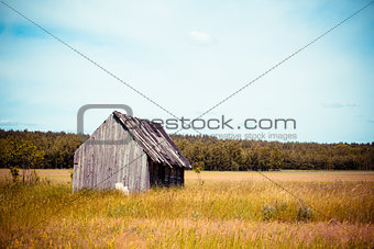 Old village house in a field