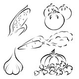 Set of vegetables logos