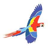 Parrot Ara in bright colors