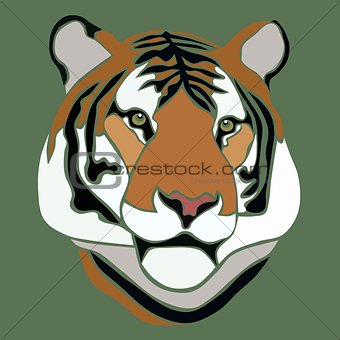 Tiger face on green