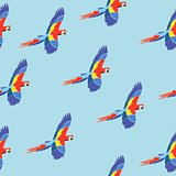 Seamless pattern parrot ara on blue