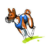 Sketch of running basenji in blue coursing dress
