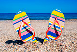 flip-flops on the sand of a beach