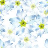 white flowers seamless