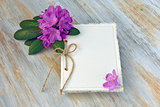 journal with azalea blossoms