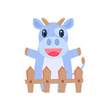 Happy Cow Behind Wooden Shed