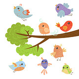 Different Cute Small Birds Sitting And Flying Around Tree Branch