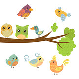 Different Cute Bird Chicks Sitting And Flying Around Tree Branch
