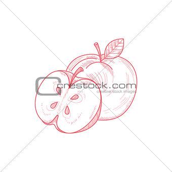 Fresh Apple Hand Drawn Artistic Sketch