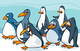 penguins group cartoon