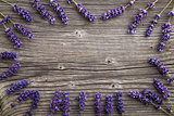 Lavender flowers on a wooden background. Floral border or frame