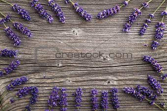 Lavender flowers on a wooden background. Floral border or frame