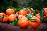 Tangerines with leaves on wooden surface