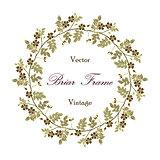 Vector vintage eglantine frame