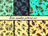 Briar seamless patterns set