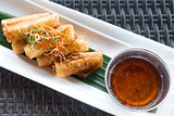 Vegetable fried spring rolls
