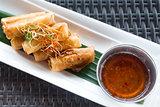 Vegetable fried spring rolls