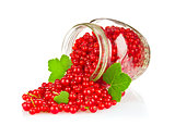 Fresh Red Currant with Green Leaf in glass jar