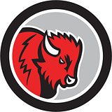 American Bison Buffalo Head Circle Retro