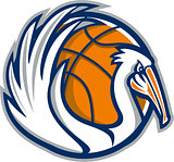 Pelican Wings Basketball Retro