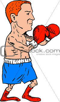 Boxer Fighting Stance Cartoon