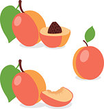 Peach. Set peaches, pieces and slices