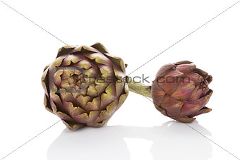 Artichoke isolated on white background.