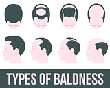 Stages of hair loss and treatment