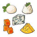 Set of different cheeses mozarella, cheddar, Roquefort, camembert maasdam