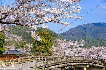 Arashiyama, Kyoto in Spring