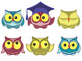 Six amusing colorful owls
