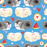 Pattern enamored hamster