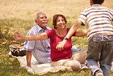Grandparents Senior Couple Hugging Young Boy At Picnic