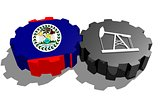 Gear with oil pump textured by Belize flag