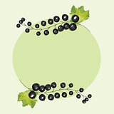 Vector hand drawn berries currants label.