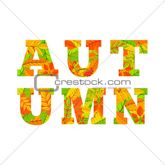 Autumn word from colorful leaves.