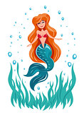 Mermaid.  Fairy tale marine character.