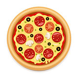 Vector detailed hot pizza with sticky cheese and salami icon