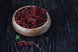 Fresh red currants