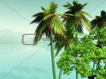 3D palm trees looking over misty ocean