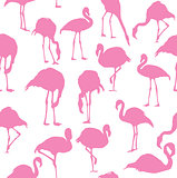 vector flamingo seamless background