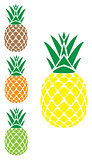 vector pineapple set
