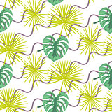 Monstera tropic plant leaves seamless pattern.