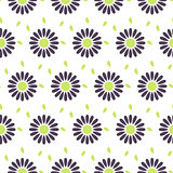 Daisy chamomile vector seamless pattern.