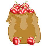 Red pepper in bag