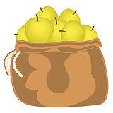 Yellow apple in bag